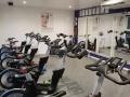 Studio-bikes2