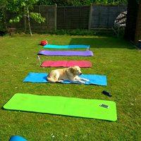 Lewis Outdoor Training